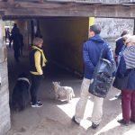 Glinda Spreen startet die Führung über das Vereinsgelände am Tag der offenen Tür beim KJRFV Zehlendorf e.V.
