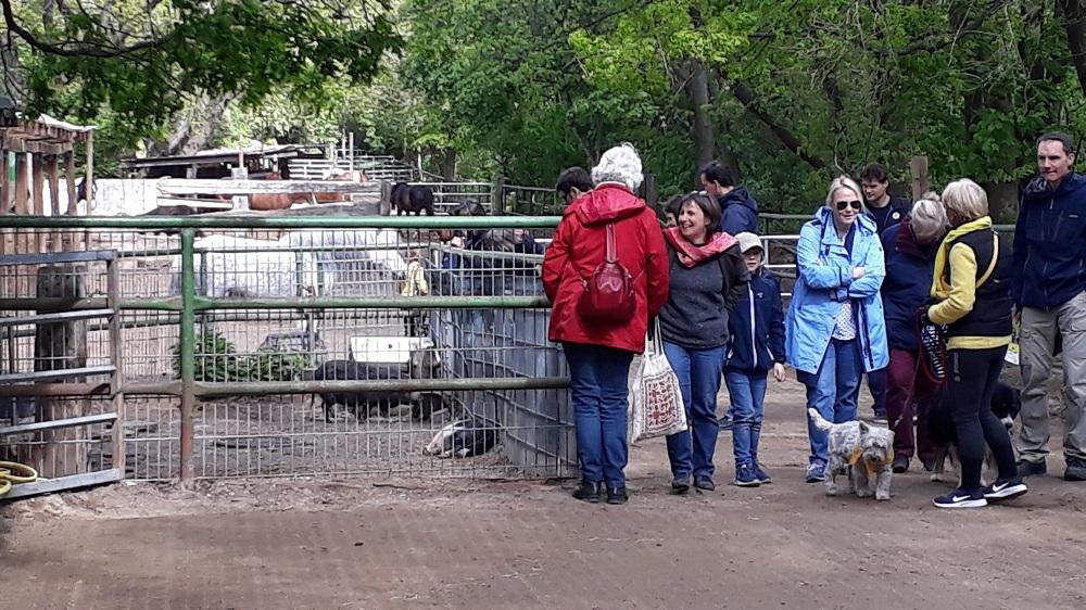 Besucher am Vereinsgelände an der Stammbahn beim Tag der offenen Tür beim KJRFV Zehlendorf e.V.