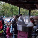 Heiß begehrt: Zuckerwatte am Tag der offenen Tür beim KJRFV Zehlendorf e.V.